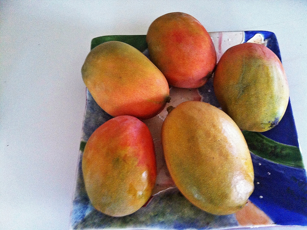 mangoes-from-our-tree